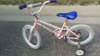 Free bike or trade for tricycle