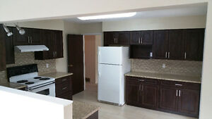 **~~~Available Now! Huge Newly Renovated - 3 Bedroom Suite~~~**