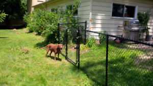Professional Chain Link Fences Installed w Two Year Warranty!