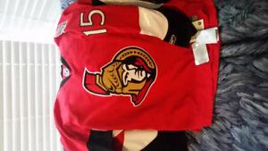 Ottawa Senators Danny Heatley Jersey