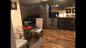 Timberlea basement suite for rent end. nov
