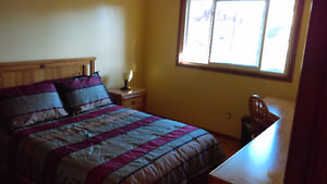 Room for Rent in Non -Smoking Home - Student preferred Stratford Kitchener Area image 3