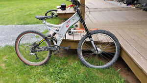 Dual Crown Norco frame downhill