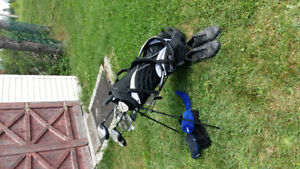 Golf clubs with case