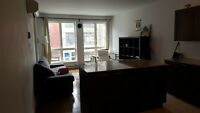 Condo Downtown Plateau Mcgill Ghetto Metro