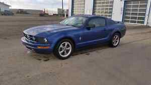 2006 Ford Mustang Trade