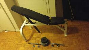 Northern Lights weight bench and weights