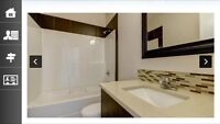 Room and bathroom to rent in shared suite