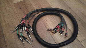 """Snake cable 10 x RCA->1/4"""""""