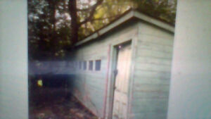 Shed to give away