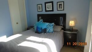 Bright south end room for rent on a quiet cul de sac