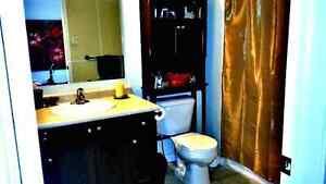 Beautiful room in Laurelwood area Kitchener / Waterloo Kitchener Area image 4