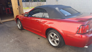 2001 gt mustang convertable.