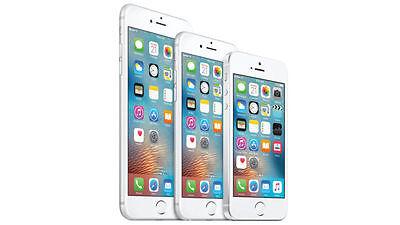 Wie sieht das Innere des iPhone SE aus?