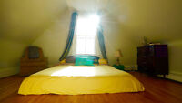 1 bdrm - Big bright with King size bed - DEC 1st (EVERYTHING IN)