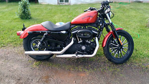 2013 HD sportster iron