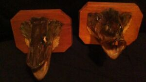 BASS AND PIKE FISH HEADS MOUNTED ON WOOD PLAK ODDITY Stratford Kitchener Area image 3