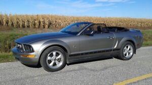 Ford Mustang décapotable 2009        45e  anniversaire