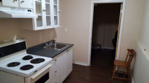 Newly Renovated & Spacious 2 Bedroom Apartment w/ Large Backyard