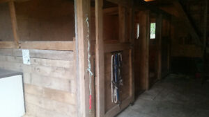 Horse Boarding 2 10x10 box stalls available