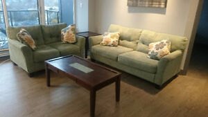 Perfect condition modern sofa and loveseat with 2 table -deliver
