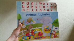 Large Alphabet Picture book