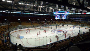 Kitchener Rangers tickets (11 games, 2 tickets, $40 each game)