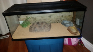 Reptile terrarium and accessories