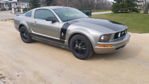 2008 Ford Mustang V6 Auto Custom Paint and Wheels