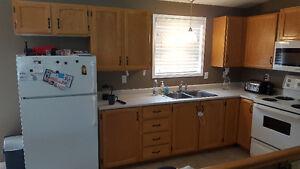 Kitchen Cabinet Setup - Sold Pending Pickup