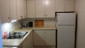 Spacious Apartment to share with just one other Kitchener / Waterloo Kitchener Area image 6
