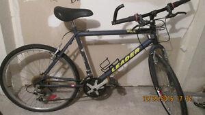 2  vélos a vendre.