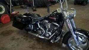 2005 Harley Davidson softtail