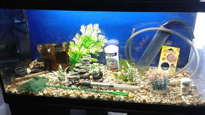 Aquarium 35 gallon avec meuble filtreur siphon chauffe eau puise