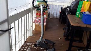 Exerciseur (escaliers) Saguenay Saguenay-Lac-Saint-Jean image 1