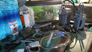 Aquariums, stands, filters, pumps, and more
