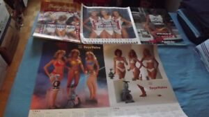 5 VINTAGE SWIMSUIT MODELS POSTERS PACKAGE DEAL:BUD,TOYO,SCHOONR