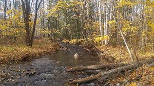 Terrain boisée, au bord d'une jolie rivière.