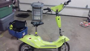24 volt electric scooter. Great rig for the kids