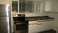 North Shore - One Bedroom Basement Suite / Utilities Included