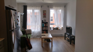 Renovated apartment for flexible sublet in St.Henri