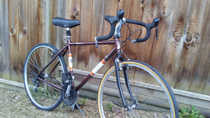 Raleigh 21 Speed Touring Road Bike ( new rear tire )