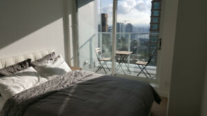 Luxuriously furnished 3 bedrooms for Rent in Downtown Vancouver