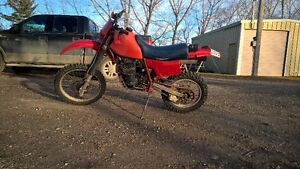 Big Thumper Looking for a New Home - '84 XR500R