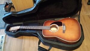 Art and Lutherie 12 string