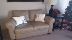 Real Leather Loveseat and Sofa Mushroom Color