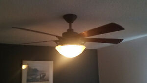 "54"" Ceiling Fan and Light"