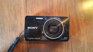 Sony cybershot 16.1 mp