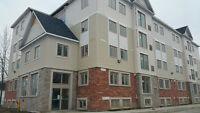 Student Housing - Room For Rent 5 Bdr Apt - Downtown OUIT Campus