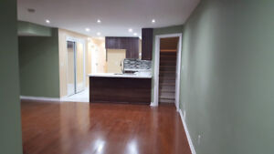 Brand new and spacious - 1 bedroom walkout basement for Nov 1st